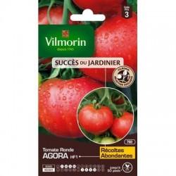 Tomate ronde AGORA HF1 - VILMORIN