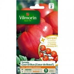 Tomate CUOR DI BUE (Cœur de bœuf) - VILMORIN