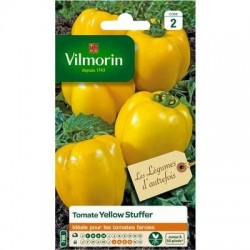 Tomate YELLOW STUFFER - VILMORIN