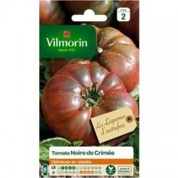 Tomate NOIRE DE CRIMÉE - VILMORIN