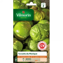Tomatillo du Mexique - VILMORIN