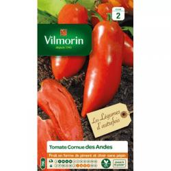Tomate Cornue des Andes - VILMORIN
