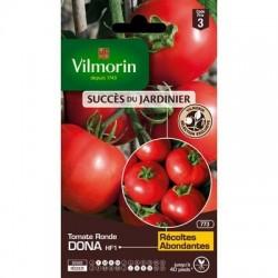 Tomate ronde DONA HF1 - VILMORIN