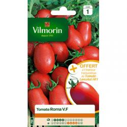 Tomate ROMA V.F - VILMORIN