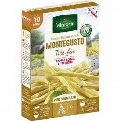 Haricot beurre sans fil MONTEGUSTO - VILMORIN
