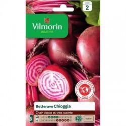 Betterave CHIOGGIA - VILMORIN