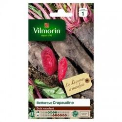 Betterave CRAPAUDINE - VILMORIN