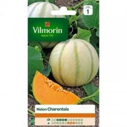 Melon CHARENTAIS - VILMORIN