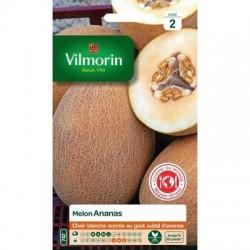 Melon ANANAS - VILMORIN