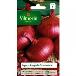 Oignon Rouge de BRUNSWICK - VILMORIN