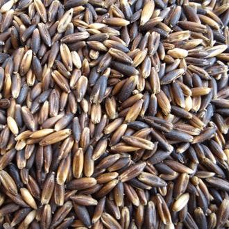 Graines et matières premières