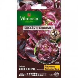 Laitue PICHOLINE - VILMORIN