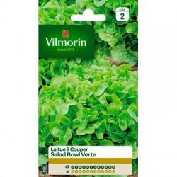 Laitue à couper SALAD BOWL VERTE - VILMORIN