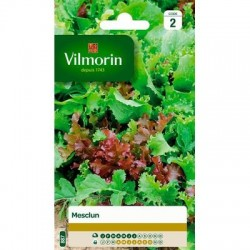 MESCLUN de 7 salades - VILMORIN