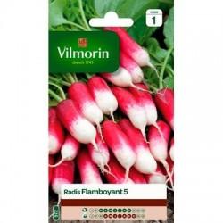 Radis FLAMBOYANT 5 - VILMORIN