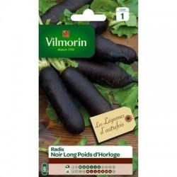 Radis Noir Long POIDS d'HORLOGE - VILMORIN