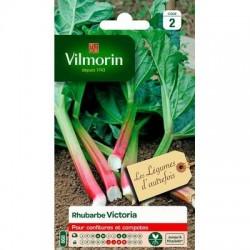 Rhubarbe VICTORIA - VILMORIN