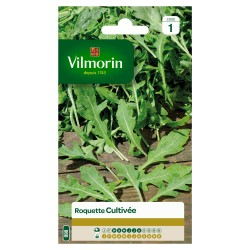 Roquette Cultivée - VILMORIN
