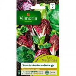 Chicorée à feuilles en Mélange - VILMORIN