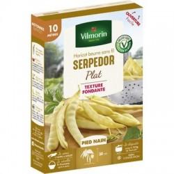 Haricot beurre sans fil SERPEDOR - VILMORIN