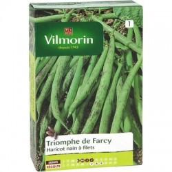 Haricot nain à filets TRIOMPHE DE FARCY - VILMORIN