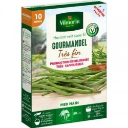 Haricot vert sans fil GOURMANDEL - VILMORIN
