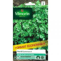 Persil COMMUN 2 - VILMORIN