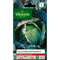 Chou de Milan de PONTOISE 2 - VILMORIN