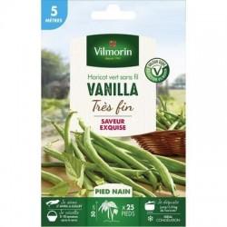 Haricot vert sans fil VANILLA - VILMORIN