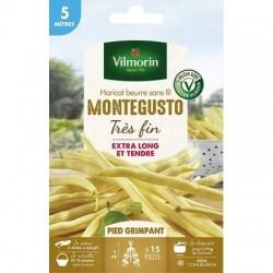 Conditionnement Haricot beurre sans fil MONTEGUSTO - VILMORIN