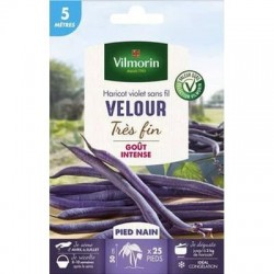 Conditionnement Haricot violet sans fil VELOUR - VILMORIN
