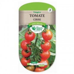 Tomate CERISE - LES DOIGTS VERTS
