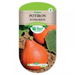 Potiron POTIMARRON - LES DOIGTS VERTS