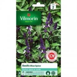 Basilic BLUE SPICE - VILMORIN