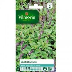 Basilic Cannelle - VILMORIN
