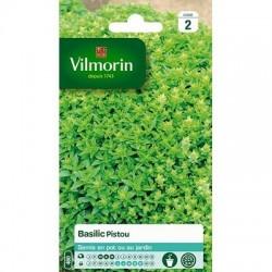 Basilic PISTOU - VILMORIN