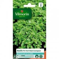 Basilic Fin Vert Nain Compact - VILMORIN