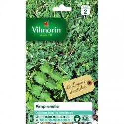 Pimprenelle - VILMORIN