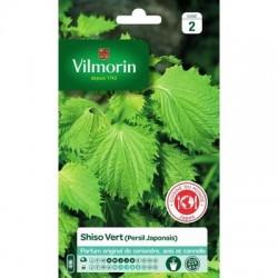 Shiso Vert (Persil Japonais) - VILMORIN