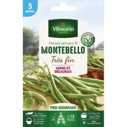 Haricot vert sans fil MONTEBELLO - VILMORIN