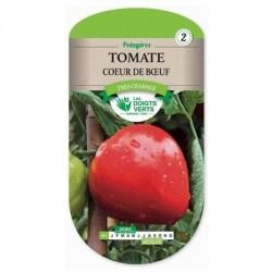 Tomate CŒUR DE BŒUF - LES DOIGTS VERTS