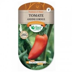 Tomate ANDINE CORNUE - LES DOIGTS VERTS