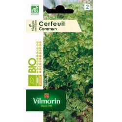 Cerfeuil Commun BIO - VILMORIN