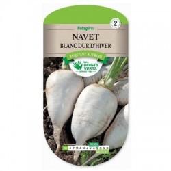 Navet Blanc Dur d'Hiver - LES DOIGTS VERTS