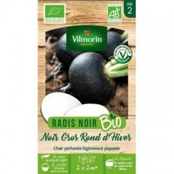 Radis Noir Gros Rond d'hiver BIO - VILMORIN