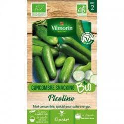 Concombre Snacking PICOLINO BIO - VILMORIN