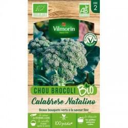 Chou Brocoli CALABREZE NATALINO BIO - VILMORIN