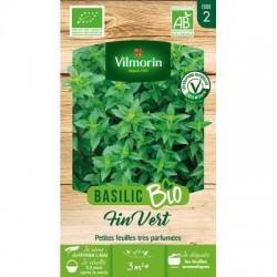 Basilic Fin Vert BIO - VILMORIN