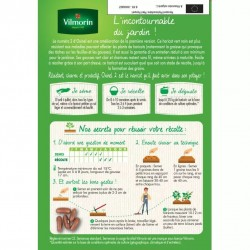 Haricot vert sans fil OXINEL 2 - VILMORIN