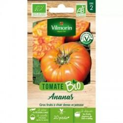 Tomate ANANAS BIO - VILMORIN